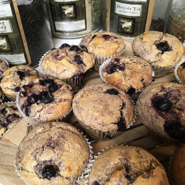 Lemon-Blueberry-Muffins-Web